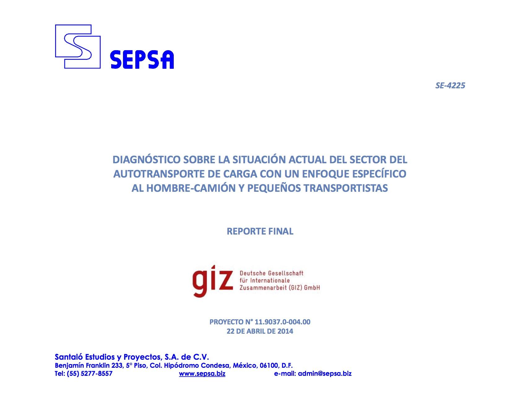 Reporte Final GIZ Radiografia mayo 2014