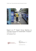 GIZ_TRANSfer_CFEG_Report_Expert-Group-Meeting-Lima-201412